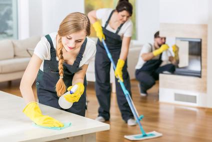 Optimal Reinigung Wohnung